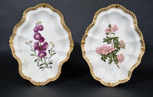 Antique English Chamberlain Worcester Porcelain Pair of Large Shaped Oval Botanical Dishes, Circa 1815-20.