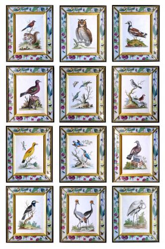 George Edwards Set of Twelve Bird Engravings, within Modern Decoupage Frames, From A Natural History of Uncommon Birds. Circa 17