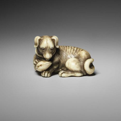 Ivory netsuke of a dog with shell, by Tomotada (Active 1760-1780)
