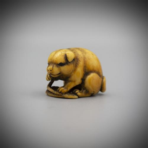 Stained Ivory Netsuke of a dog with a Sandal, by Okatomo